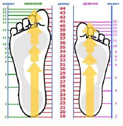 средний размер члена у мужчин Поронайск